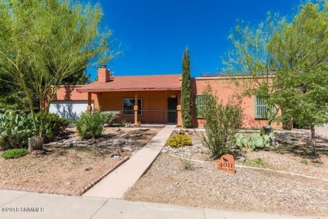 4011 Oleta Drive, Las Cruces, NM 88001 (MLS #1806059) :: Steinborn & Associates Real Estate