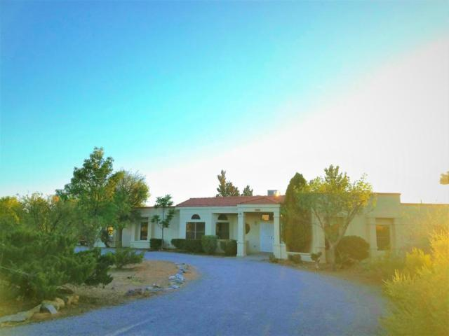 5985 Robledo Road, Las Cruces, NM 88012 (MLS #1806119) :: Steinborn & Associates Real Estate
