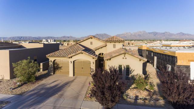 6054 Solstice Street, Las Cruces, NM 88012 (MLS #1806221) :: Steinborn & Associates Real Estate