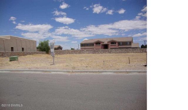 102 Scotland Court, Las Cruces, NM 88005 (MLS #1806262) :: Steinborn & Associates Real Estate