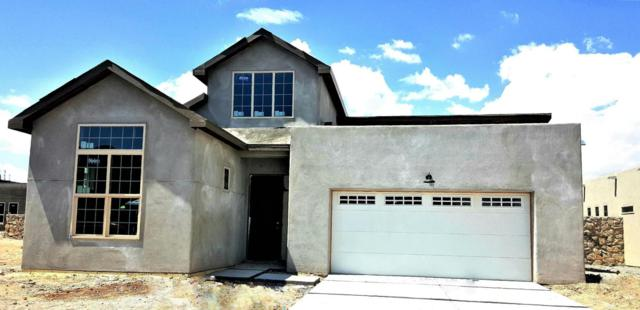 3687 Santa Adriana Avenue, Las Cruces, NM 88012 (MLS #1806272) :: Steinborn & Associates Real Estate