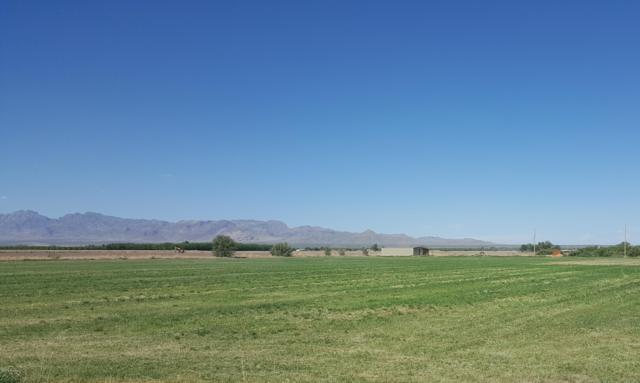 3500 County Road B010, La Mesa, NM 88044 (MLS #1806510) :: Steinborn & Associates Real Estate