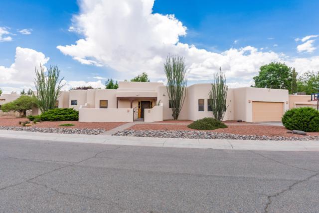 2013 Vista Lejano, Las Cruces, NM 88005 (MLS #1806766) :: Steinborn & Associates Real Estate