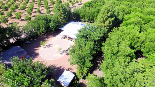 18001 S Highway 28, La Mesa, NM 88044 (MLS #1806812) :: Steinborn & Associates Real Estate