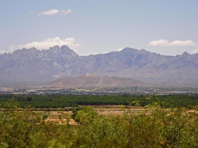 0 Crest Ridge Road, Las Cruces, NM 88005 (MLS #1806975) :: Steinborn & Associates Real Estate