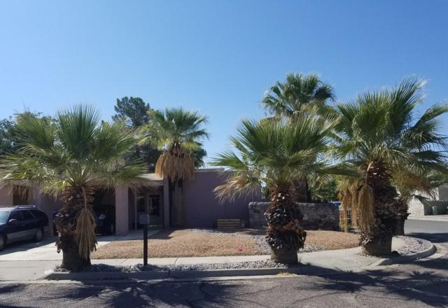 1600 Birch Court, Las Cruces, NM 88001 (MLS #1807191) :: Austin Tharp Team