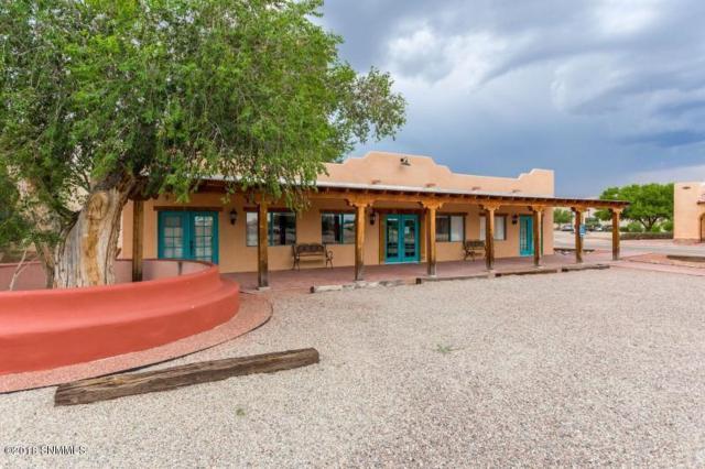 1801 Avenida De Mesilla, Las Cruces, NM 88005 (MLS #1807232) :: Steinborn & Associates Real Estate