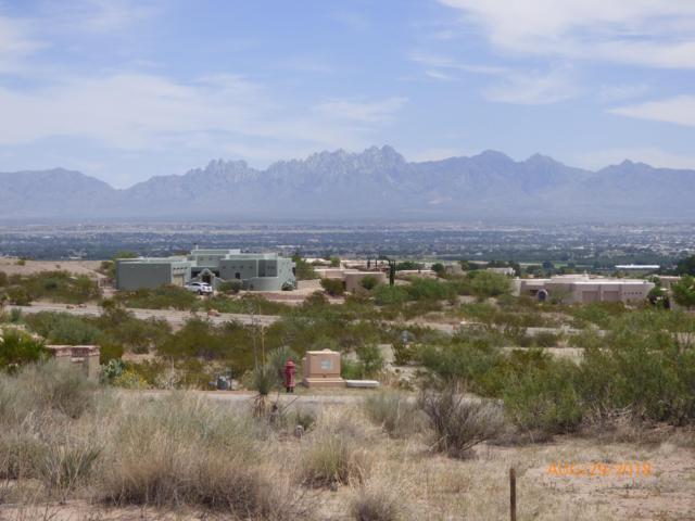 Lot 5 Estancia Real Place, Las Cruces, NM 88007 (MLS #1807316) :: Steinborn & Associates Real Estate