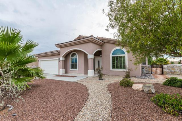 2475 Conchas Lane, Las Cruces, NM 88011 (MLS #1807363) :: Steinborn & Associates Real Estate