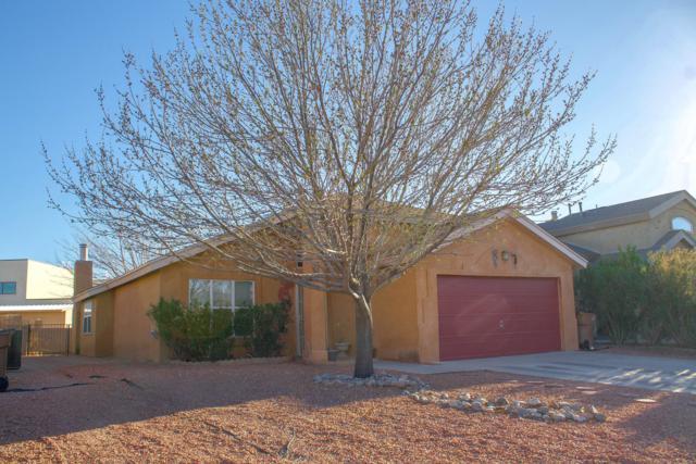 1335 Fountain Loop, Las Cruces, NM 88007 (MLS #1807384) :: Steinborn & Associates Real Estate