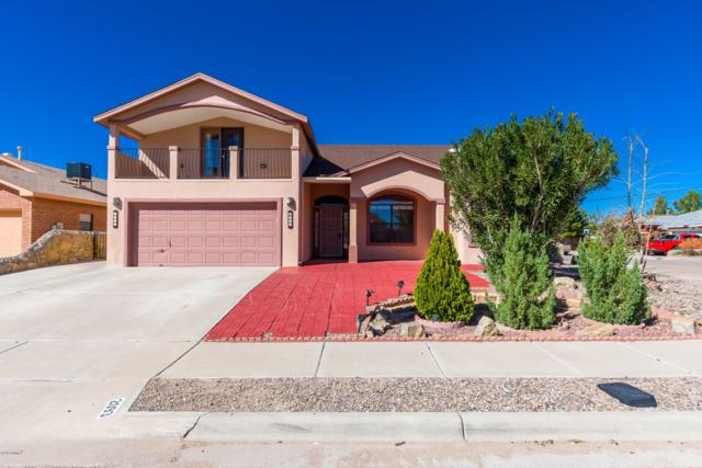 2093 Reina Drive, Las Cruces, NM 88007 (MLS #1807747) :: Steinborn & Associates Real Estate