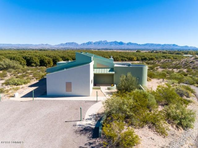 3903 Pantera Circle, Las Cruces, NM 88007 (MLS #1807942) :: Austin Tharp Team