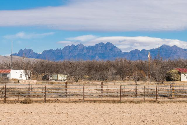 401 Holy Cross Road, Mesilla Park, NM 88047 (MLS #1808105) :: Steinborn & Associates Real Estate