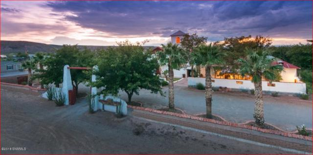 105 Jose Serna Street Avenue, Hatch, NM 87937 (MLS #1808242) :: Steinborn & Associates Real Estate