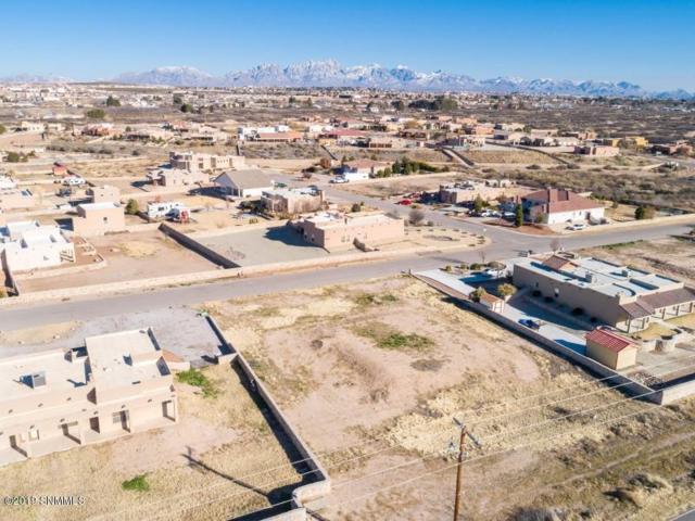 104 Coues Deer Avenue, Las Cruces, NM 88007 (MLS #1808317) :: Steinborn & Associates Real Estate