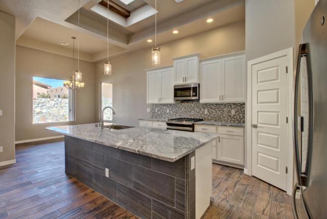 4531 Miramar Arc, Las Cruces, NM 88011 (MLS #1808327) :: Steinborn & Associates Real Estate
