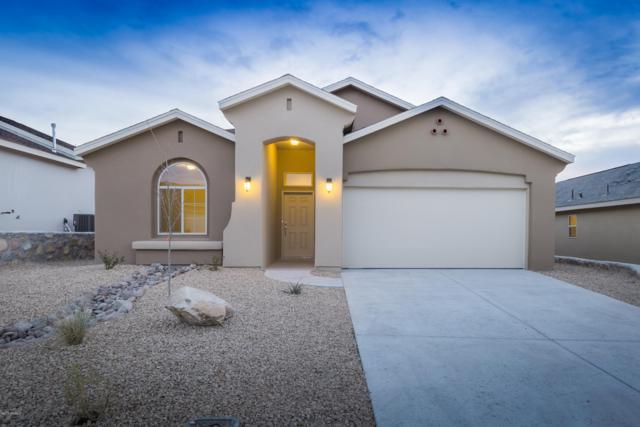 4565 Vermejo Drive, Las Cruces, NM 88012 (MLS #1900008) :: Steinborn & Associates Real Estate