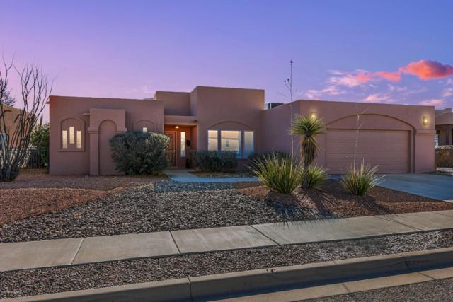 759 Stone Canyon Drive, Las Cruces, NM 88011 (MLS #1900050) :: Steinborn & Associates Real Estate
