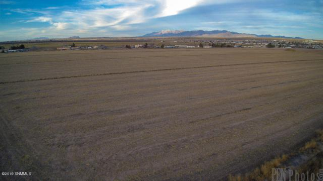 000 Ward Road, Vado, NM 88072 (MLS #1900109) :: Steinborn & Associates Real Estate