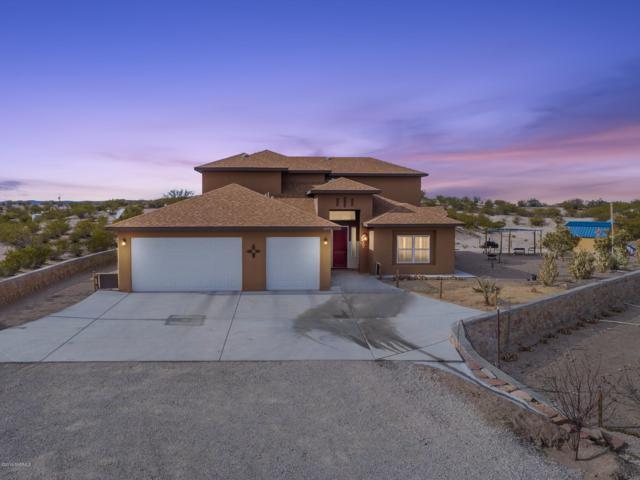 2595 Webb Road, Las Cruces, NM 88012 (MLS #1900195) :: Steinborn & Associates Real Estate