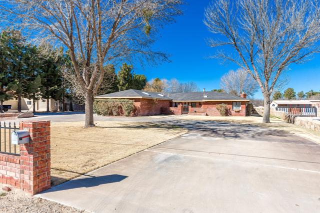 2142 Wildwind Road, Las Cruces, NM 88007 (MLS #1900343) :: Steinborn & Associates Real Estate