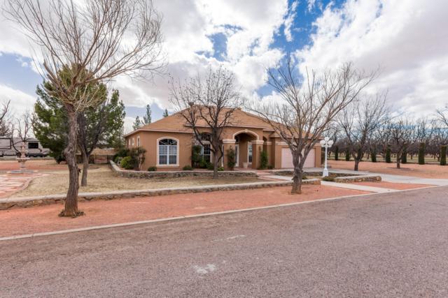 6685 Rio Dorado, Las Cruces, NM 88005 (MLS #1900415) :: Steinborn & Associates Real Estate