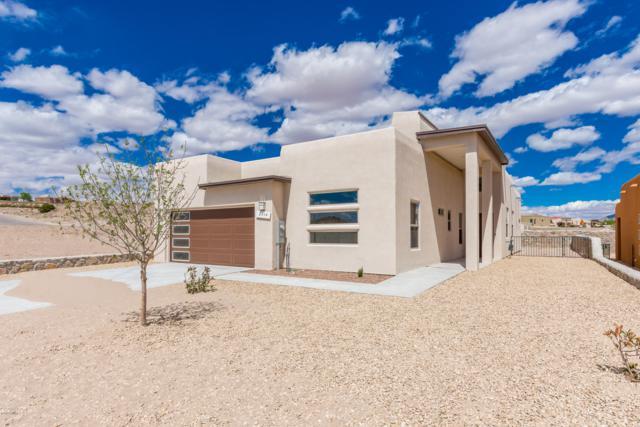 2914 Bink Place, Las Cruces, NM 88011 (MLS #1900479) :: Steinborn & Associates Real Estate