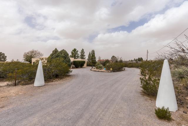 4091 Sotol Drive, Las Cruces, NM 88011 (MLS #1900568) :: Steinborn & Associates Real Estate