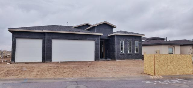 3888 Ringneck Drive, Las Cruces, NM 88001 (MLS #1900704) :: Steinborn & Associates Real Estate