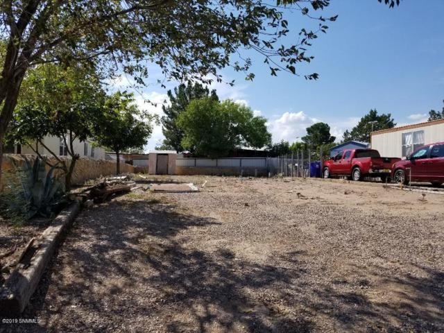 225 Branding Iron Circle, Las Cruces, NM 88005 (MLS #1900716) :: Better Homes and Gardens Real Estate - Steinborn & Associates