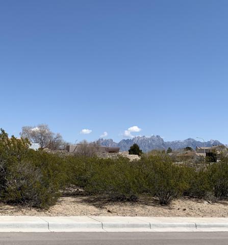 4020 Nemesh Drive, Las Cruces, NM 88005 (MLS #1900739) :: Steinborn & Associates Real Estate