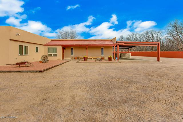 235 E Forest Rd, Mesilla Park, NM 88047 (MLS #1900749) :: Steinborn & Associates Real Estate