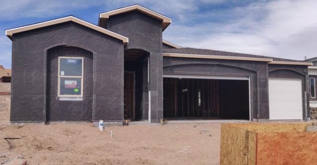 4119 Bravia Dove Loop, Las Cruces, NM 88001 (MLS #1900761) :: Steinborn & Associates Real Estate