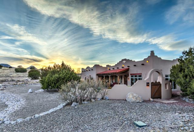 99 Black Range Road, Hillsboro, NM 88042 (MLS #1900904) :: Steinborn & Associates Real Estate