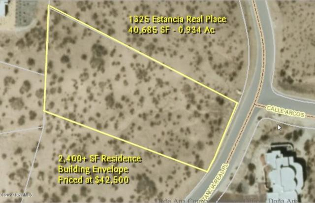 1325 Estancias Real Place, Las Cruces, NM 88007 (MLS #1901029) :: Steinborn & Associates Real Estate