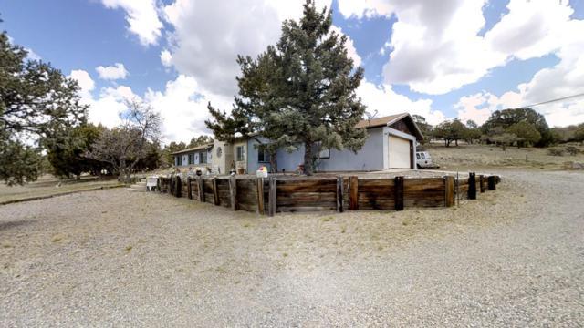 4240 N Arrowhead Road, SILVER CITY, NM 88061 (MLS #1901165) :: Steinborn & Associates Real Estate