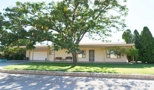 5230 Cortez Avenue, Las Cruces, NM 88012 (MLS #1901195) :: Steinborn & Associates Real Estate