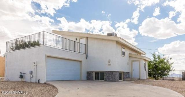 736 Lariat Drive, Las Cruces, NM 88011 (MLS #1901240) :: Arising Group Real Estate Associates