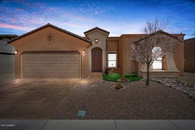 3701 Santa Minerva Avenue, Las Cruces, NM 88012 (MLS #1901259) :: Steinborn & Associates Real Estate
