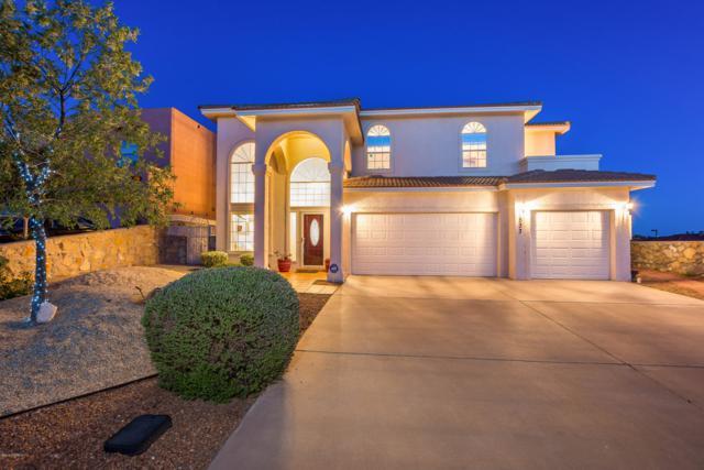 533 Corona Del Campo Loop, Las Cruces, NM 88011 (MLS #1901279) :: Steinborn & Associates Real Estate
