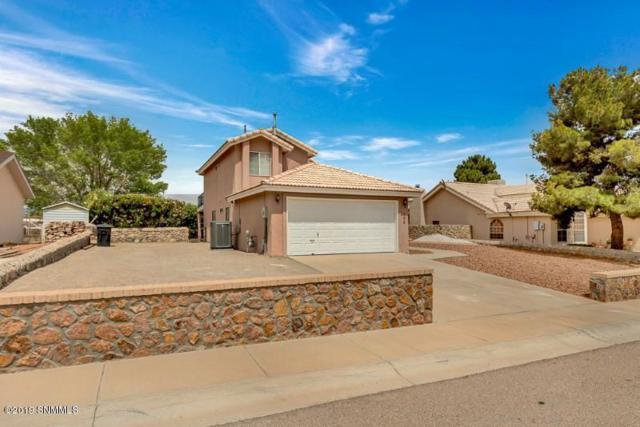 102 Torrey Pines Drive, Santa Teresa, NM 88008 (MLS #1901427) :: Steinborn & Associates Real Estate