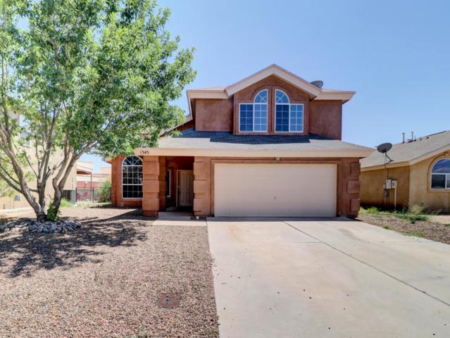 1343 Fountain Loop, Las Cruces, NM 88007 (MLS #1901496) :: Steinborn & Associates Real Estate