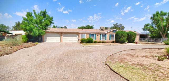 704 W Taylor Road, Las Cruces, NM 88007 (MLS #1901615) :: Steinborn & Associates Real Estate