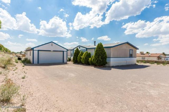 5219 Victorio Trail, Las Cruces, NM 88012 (MLS #1901619) :: Steinborn & Associates Real Estate