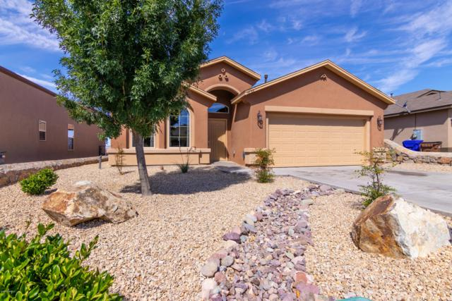 4733 Zachary Place, Las Cruces, NM 88012 (MLS #1901671) :: Steinborn & Associates Real Estate