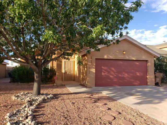 1335 Fountain Loop, Las Cruces, NM 88007 (MLS #1901771) :: Steinborn & Associates Real Estate