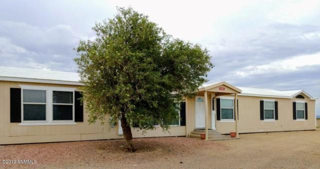 4585 SW Red Mountain Way, Deming, NM 88030 (MLS #1901840) :: Arising Group Real Estate Associates