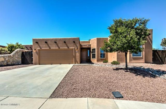 2627 Cashmere Court, Las Cruces, NM 88011 (MLS #1902089) :: Steinborn & Associates Real Estate