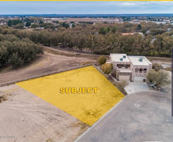 TBD Wall Avenue, Las Cruces, NM 88001 (MLS #1902091) :: Arising Group Real Estate Associates