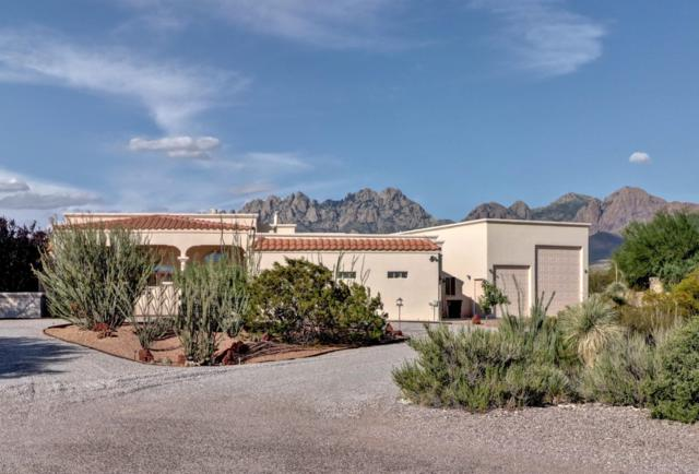 3930 Desert Broom Court, Las Cruces, NM 88011 (MLS #1902117) :: Steinborn & Associates Real Estate
